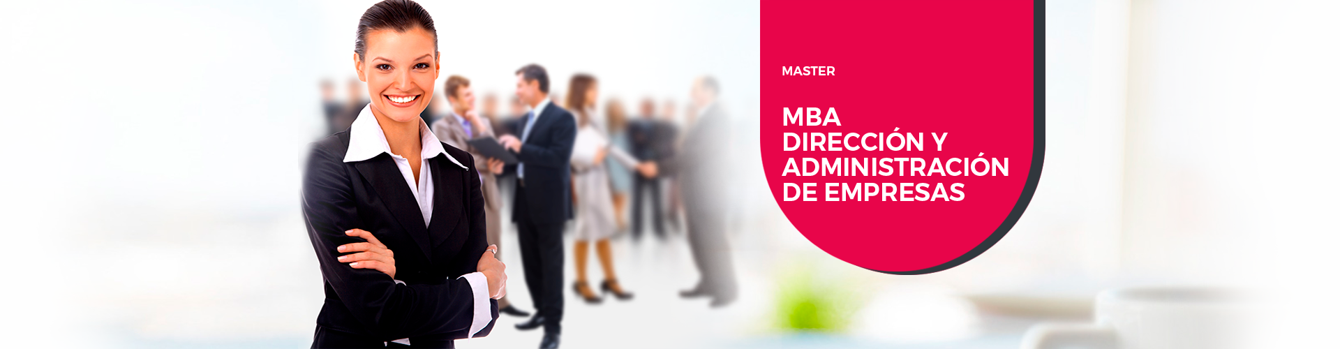 Master Dirección y Administración de Empresas