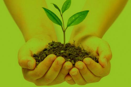 master-gestion-medio-ambiente-eipe-madrid