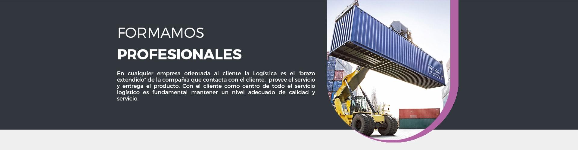 Este master de logística pone al cliente como centro de todo servicio logístico, para mantener un nivel adecuado de calidad o servicio.