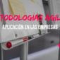 ¿Qué son las metodologías ágiles y cuál es su aplicación en la empresa?