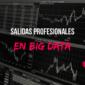Salidas profesionales en el sector del Big Data